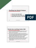 Morfologi Badan Bijih.pdf