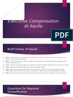 Executive Compensation at Aquila.pptx