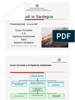 09- Gli Incendi in Sardegna