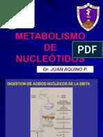 Metabolismo de Nucleotidos-2013