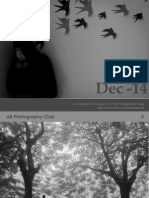 Dec -14 Monthly Photo eBook - AB Photography Club