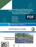 Evaluación de Degradación de Diesel y Queroseno En