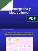 BioQ Metabolismo1 CND