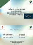 Final Assignment Presentation Slides Format