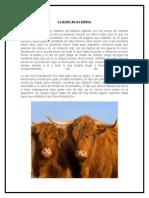 La joroba de los búfalos.docx
