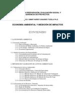 Economia Ambiental y Medición de Impactos