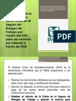 2015 Guia Determinacion Prima de Riesgo