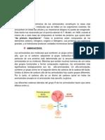 Proteinas y Lipidos