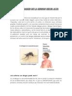 Que Es El Dengue