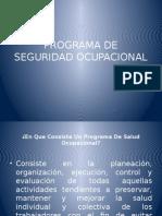 Programa de Seguridad Ocupacional