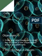 Cells[1].pptx