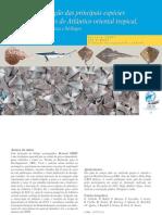 Guia de identificação de raias e tubarões encontrados no Atlântico Oriental Tropical