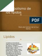 Expo Metabolismo de Los Lípidos