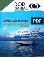 Boletín Mirador Empresarial Nro 2