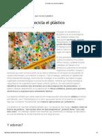 Un Hongo Que Recicla El Plástico