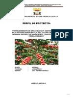 Perfil Productivo Cafe Huanuco