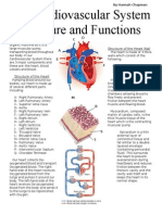 cardiovascular article