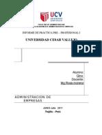 100711792 Practicas Pre Profesionales TERMINADO GINO