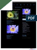 Catálogo de Plantas Acuáticas