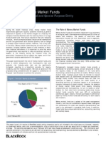 Viewpoint Money Market Funds Feb 2010