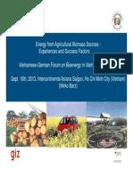 3. Bioenergy Vietnam MirkoB En