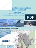Bottlenose Dolphin Conservation