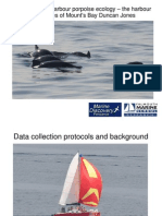 Harbour Porpoise Ecology