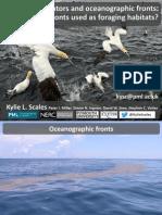 Marine Predators And Oceanographic Fronts