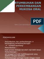 Mukosa Oral