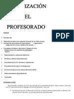 2 3 y 7 Organizacion_del_profesorado