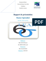Rapport Lean Six Sigma