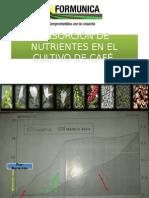 Absorción de Nutrientes en El Cultivo de Café