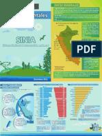 Cifras Medio Ambiente - Perú