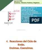 CLASE 8B-  2015.pdf
