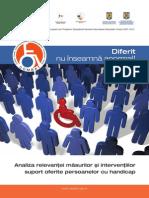Analiza Relevanţei Măsurilor Şi Intervenţiilor Suport Oferite Persoanelor Cu Handicap