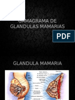 Gamagrama de Glandulas Mamarias