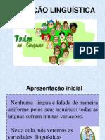Linguagem coloquial e culta brasileira