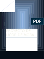 PROYECTO-DE-LICOR-DE-MORA.docx