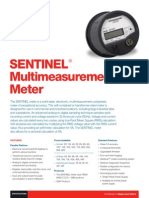 SENTINEL Multimeasurement Meter