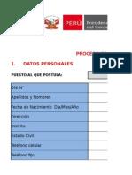 CAS-2015-GEN-2-Formato1.xlsx
