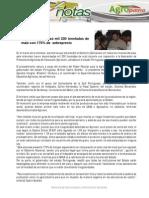 Boletín Agronota n° 54
