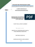 leguminosas fitorremediadoras