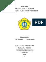 Pkl Yesi Verawati (110421100038)
