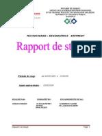 Raport Siham