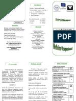 Triptico Diplomado Medicina Ocupacional GRUPO RAFI (2014)