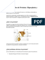 Enfermedades de Próstata