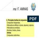 Tema17.Aminas