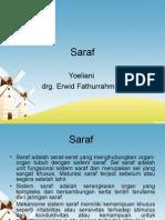 Saraf Materi SSC.ppt