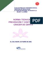 Norma_C.A DE CERVIX.pdf