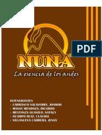 Proyecto de Inversion NUNA